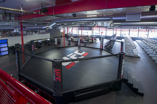 Fitness training mma sunnyvale ufc gym for Cost of building a gym