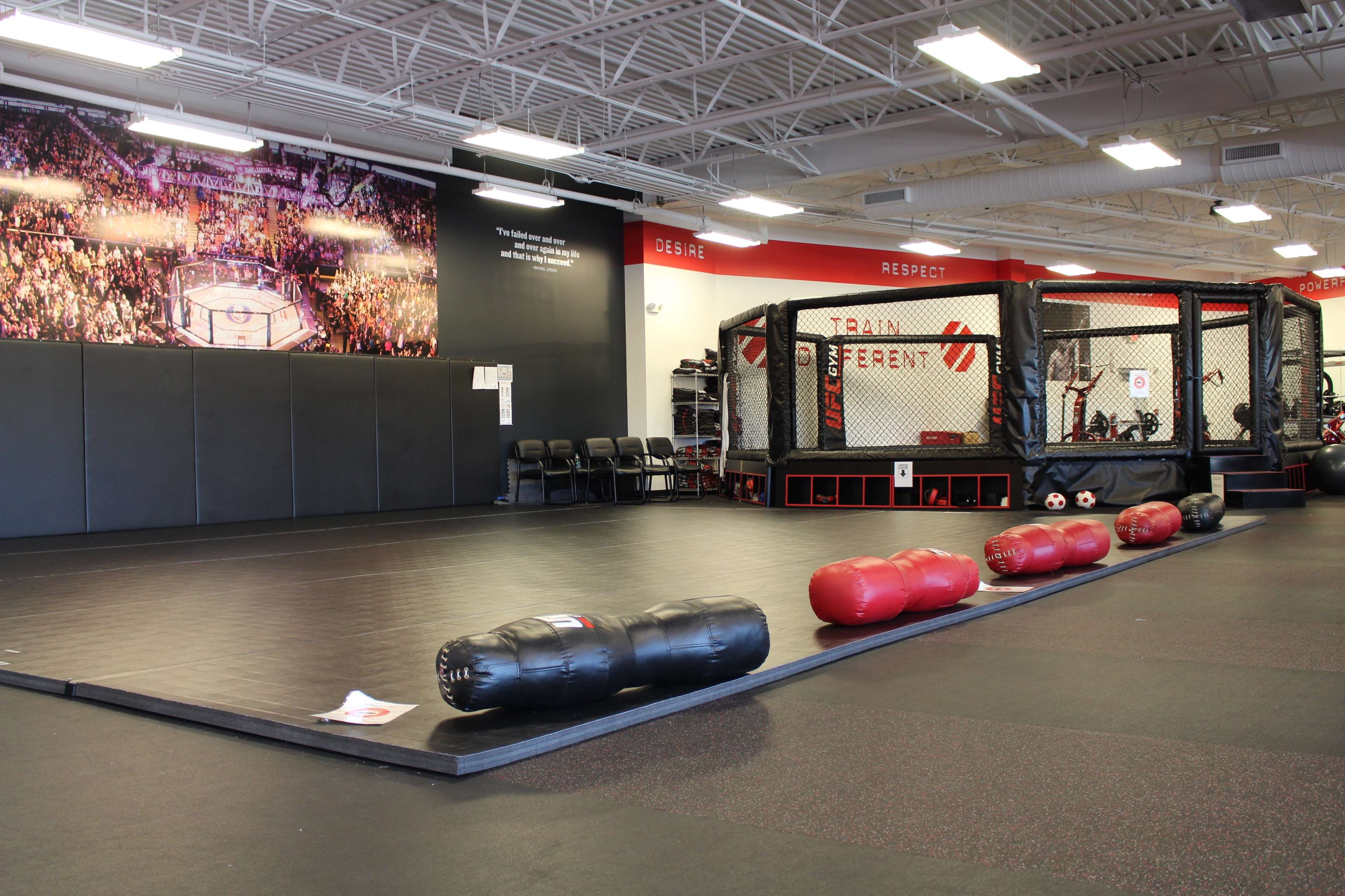 Fitness & Training Gym in Downers Grove, IL | UFC GYM